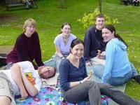 Highlight for Album: Clyne Woods & Gardens (Part 2)