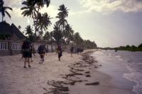 The last significant walking with our bags we do, from the Paradise to the Palm Tree..